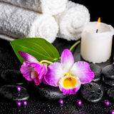 Beautiful spa still life of purple orchid dendrobium, leaf with Royalty Free Stock Photo
