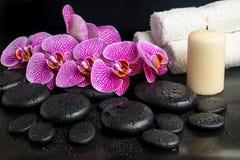 Beautiful spa stilleven van bloeiend takje Stock Afbeeldingen