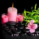 Beautiful spa stilleven van roze hibiscusbloem, takjebamboe Royalty-vrije Stock Foto