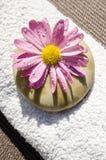 Beautiful Spa Wet Flower Stock Image