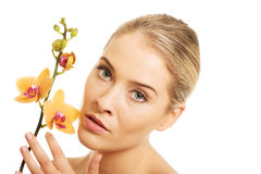 Beautiful spa woman with orange orchid Stock Image
