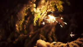 Beautiful sparkler outdoor in snowy tree at christmas time stock footage