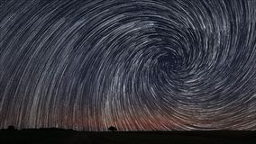 Beautiful Spiral Star Trails over filed with lonely tree. Beautiful night sky. Royalty Free Stock Photography
