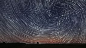 Beautiful Spiral Star Trails over filed with lonely tree. Beautiful night sky Stock Photography