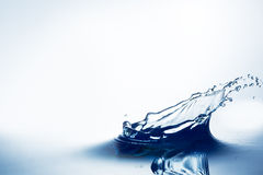 Beautiful splash of water Royalty Free Stock Images