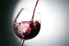 Beautiful splash of wine Royalty Free Stock Images
