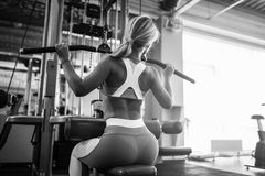 Beautiful sports young woman posing in fitness gym. Royalty Free Stock Images