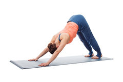 Beautiful sporty fit yogi girl practices yoga Royalty Free Stock Images