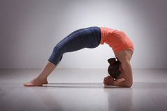 Beautiful sporty fit yogi girl practices yoga Royalty Free Stock Photos
