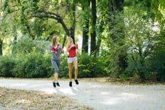 Beautiful sporty women jogging Royalty Free Stock Photography