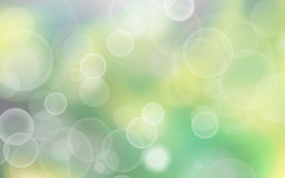 Beautiful spring abstract green natural light background  Stock Photography