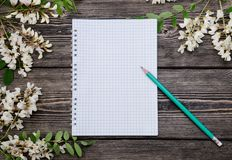 Beautiful spring acacia blossom branches and notepad stock photography