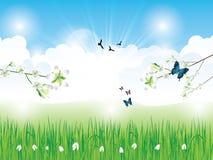Beautiful spring background Stock Image
