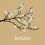 Beautiful spring  background with birds on cherry  Royalty Free Stock Photography