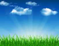 Beautiful  Spring background. Beautiful spring background of blue sky with grass and bokeh lights. vector background summer design  green garden nature Stock Photo