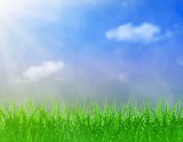 Beautiful  Spring background. Beautiful spring background of blue sky with grass and bokeh lights. vector background summer design  green garden nature Stock Images