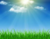 Beautiful  Spring background. Beautiful spring background of blue sky with grass and bokeh lights. vector background summer design  green garden nature Stock Photos