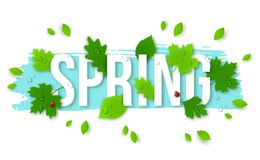 Beautiful Spring Background with Leaves, Lady Bugs Royalty Free Stock Photo