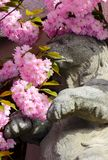 Sculpture of a bear in Sakura flower blossom. Beautiful spring background with sculpture of a bear in pink Sakura flowers in springtime royalty free stock images