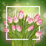 Beautiful Spring Background With Tulips. EPS 10 vector illustration