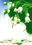 Beautiful spring bells flowers on elegant background Stock Images