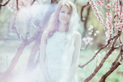 Beautiful spring blond girl in blooming tree.  Royalty Free Stock Photography