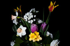 Beautiful Spring Bouquet Against A Black Background Royalty Free Stock Photo
