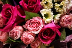Beautiful spring bouquet of flowers close-up on a pink background. Bouquet of roses, chrysanthemums, lilies. Stock Images
