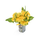 Beautiful spring bouquet in the money Royalty Free Stock Photo