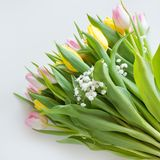 Beautiful spring bouquet of yellow and pink tulip on a white background with copy space for your spring wishes. Royalty Free Stock Photos