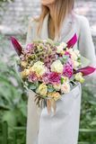Beautiful spring bouquet. Young girl holding a flowers arrangement with various of colors. In the Park, blurred leaves royalty free stock photography