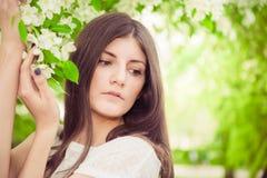Beautiful spring brunette girl Royalty Free Stock Image