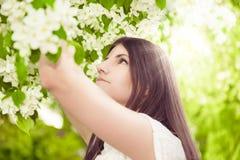 Beautiful spring brunette girl Stock Photos