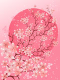 Beautiful spring. Cherry blossom background. Cherry blossom background. Beautiful spring nature scene royalty free illustration