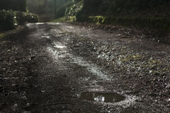 Beautiful Spring countryside landscape with puddle at  road afte Stock Photos