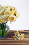 Daffodils in vase. Beautiful spring daffodils in a glass vase Royalty Free Stock Photos