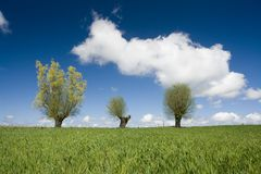 Beautiful spring day Royalty Free Stock Photography