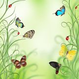 Beautiful spring design Royalty Free Stock Images