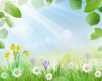 Beautiful spring design Stock Image