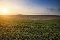 Beautiful Spring evening sunset light over fields landscape on f Stock Photo