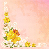 Beautiful spring floral postcard Royalty Free Stock Photo