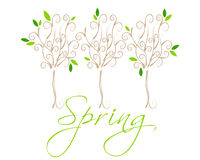Beautiful spring floral trees illustration Royalty Free Stock Photography