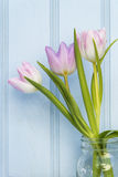 Beautiful Spring flower still life with wooden background and ho Stock Image