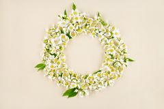 Beautiful spring flower wreath for holiday. Beautiful spring wreath with jasmine flowers for a holiday day Stock Image