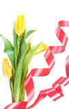 Beautiful spring flowers Royalty Free Stock Photo