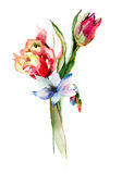 Beautiful spring flowers. Watercolor illustration Stock Photo