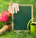 Beautiful spring flowers and blackboard blank on the green grass Royalty Free Stock Image