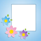 Beautiful spring flowers blue background - Royalty Free Stock Photo
