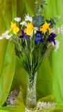 Beautiful spring flowers in a glass vase Stock Photos