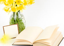Beautiful spring flowers in a glass vase Royalty Free Stock Photos